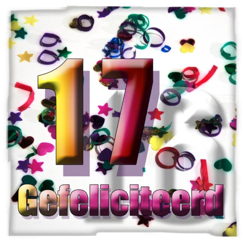 17 jaar jarig 17 Jaar Verjaardag Man   ARCHIDEV 17 jaar jarig