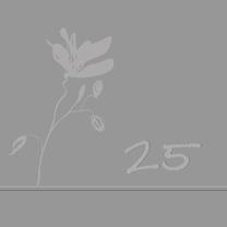 Jubileumkaarten - 25 jaar getrouwd in chique grijs