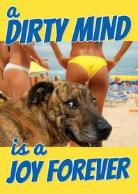 Verjaardagskaarten - A dirty mind is a joy forever