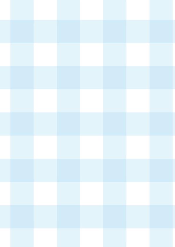 Babyfeestje Ster muisjes blauw 3