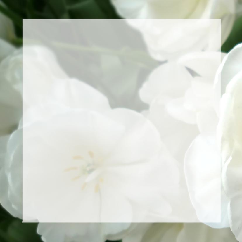 Bedankt bloemen - witte tulp rozen 2
