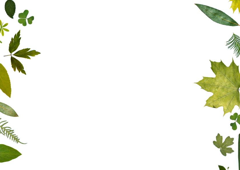 Bedankt groene blaadjes 2