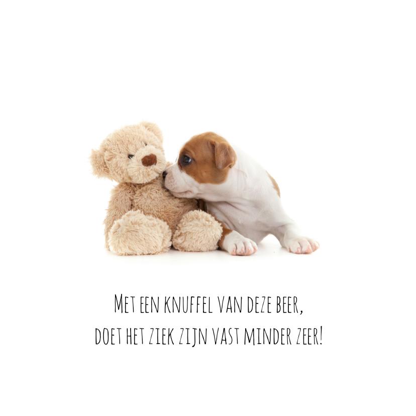 Beterschap - Puppy met knuffel 2