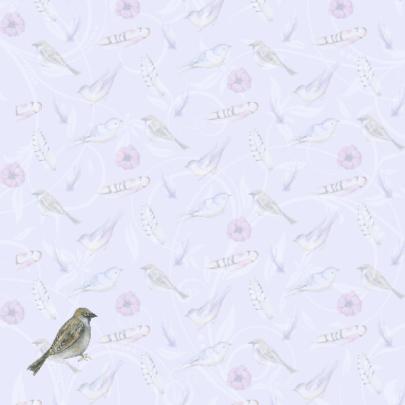 Beterschap vogeltjes veertjes 2