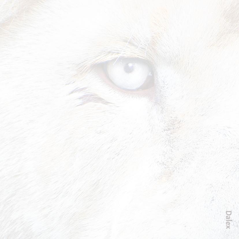 Beterschapkaart- Witte Leeuw 2