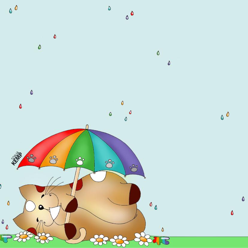 Beterschapskaart kat in de regen(boog) - Sk 2