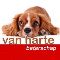 beterschapskaart met hondje