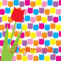 Beterschapskaart tulpen