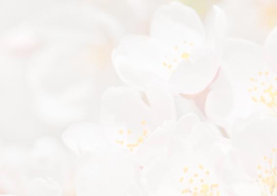 Bloemenkaarten-Sakurabloemen 2
