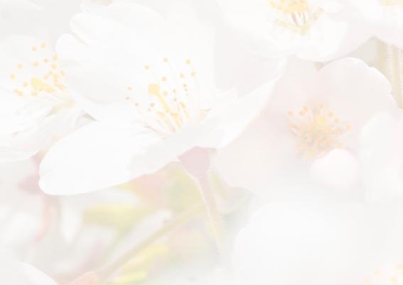 Bloemenkaarten-Sakurabloemen 3