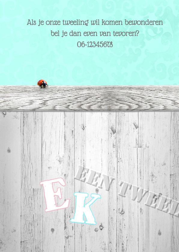 Brocante,  hout en lint tweeling 2