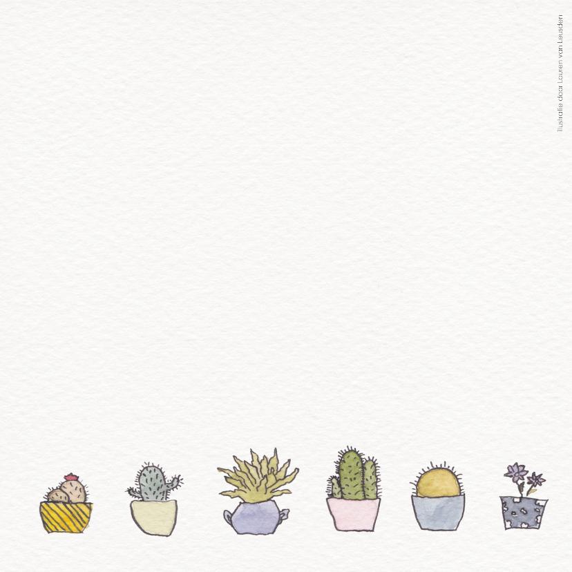 Cactus en vetplant 2