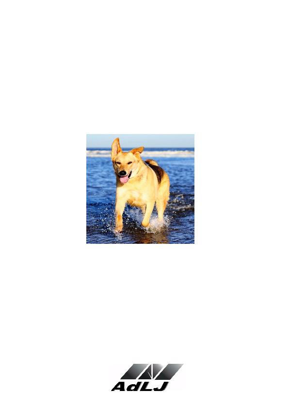 Cadeautje Hond rood - AW 2