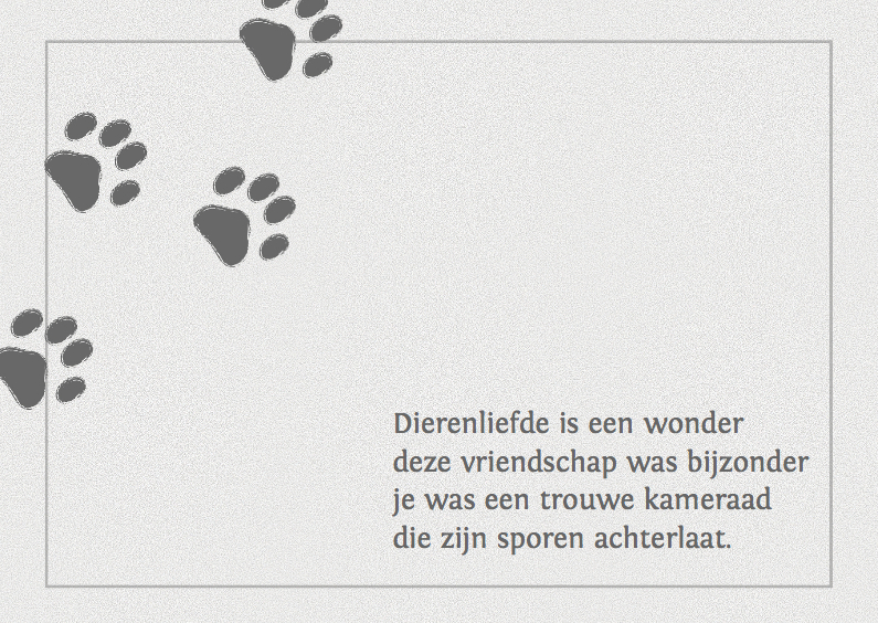 Iets Nieuws Condoleance kaart voor een hond of poes | Kaartje2go &AI91