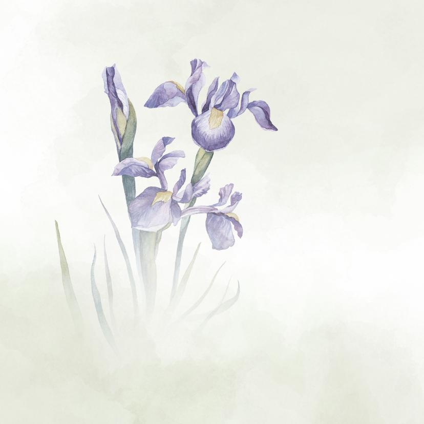 Condoleance met blauwe Iris 2