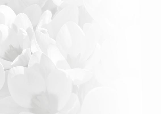 Condoleance met krokus 3