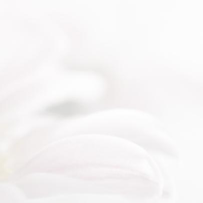 Condoleance met roze chrysant 3