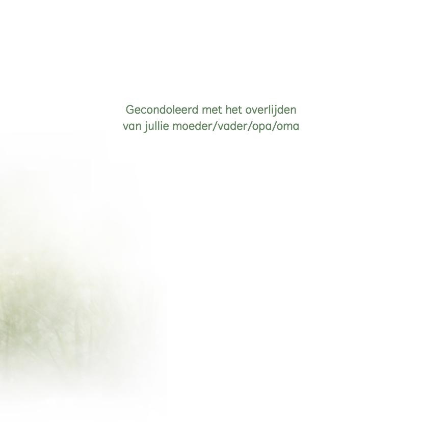 Condoleance paddenstoel/herfst 3