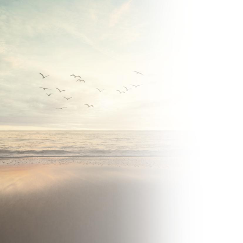 Condoleance - vogels zee 2