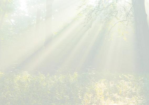 Condoleancekaart-ElswoutLicht 3