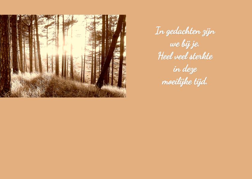Condoleancekaart-Forest Memories 2