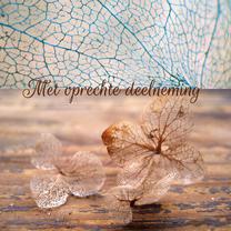 Condoleancekaart, hortensia foto