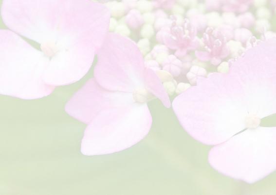 Condoleancekaart Hortensia's 3