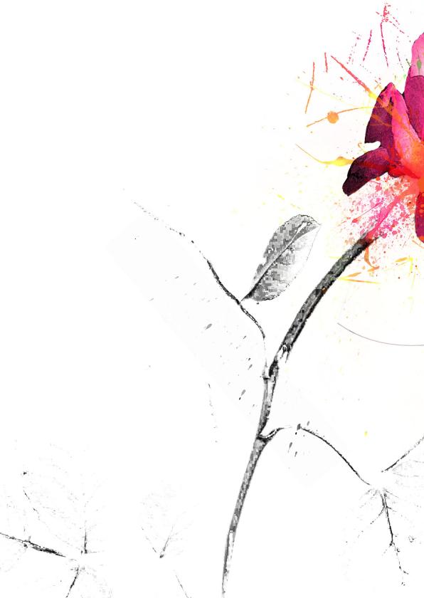 Condoleancekaart roze roos steun 2