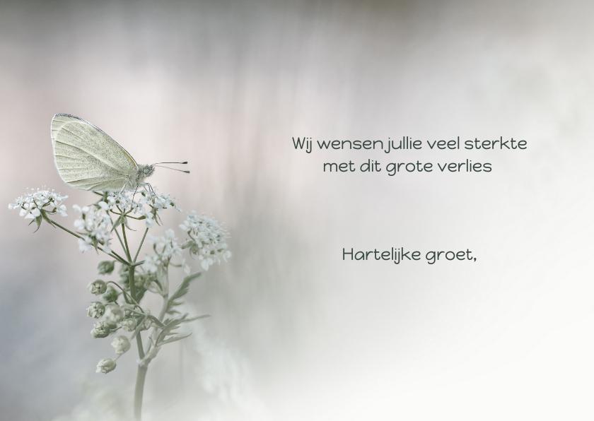 Condoleancekaart witte vlinder 3