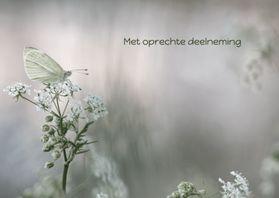 Condoleancekaarten - Condoleancekaart witte vlinder