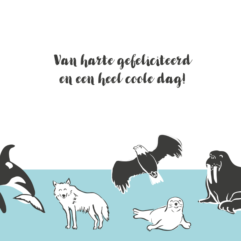Coole verjaardagskaart dieren Noordpool 3