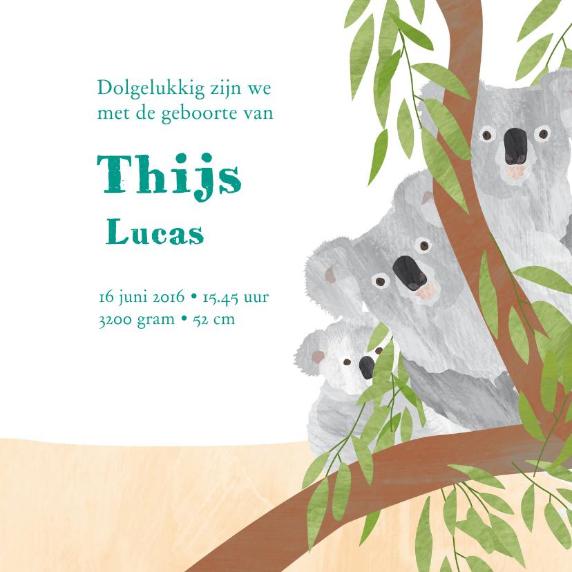 Dieren geboortekaartje kangoeroe 3