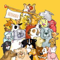 Dieren honden, een heleboel!