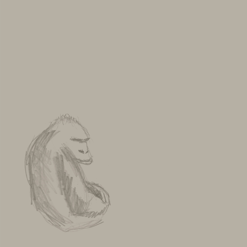 Dierenkaarten - Gorilla 3