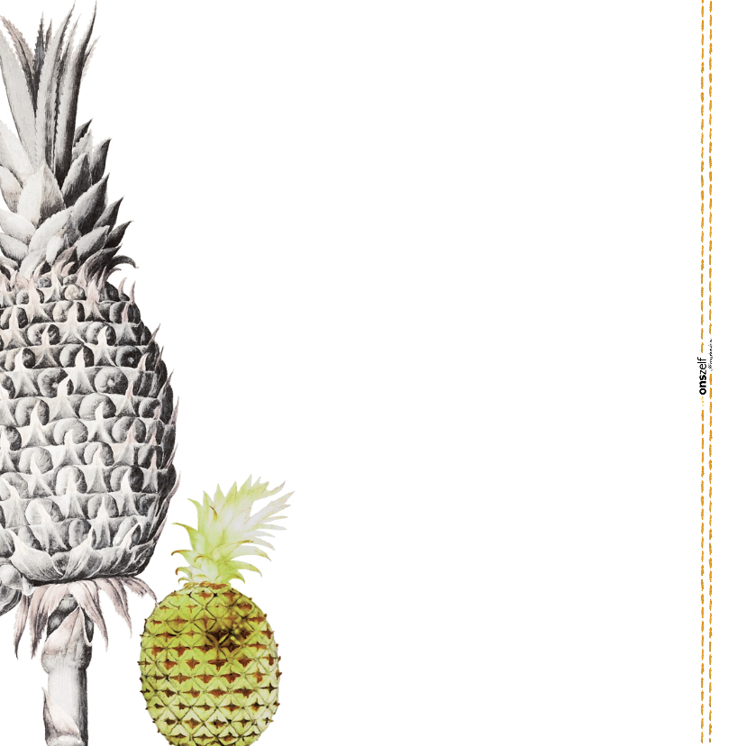 Een kaart voor je lief 'YOU ARE THE PINEAPPLE OF MY EYE' 2