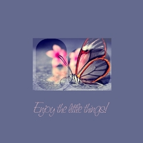 Religie kaarten - Enjoy the little things