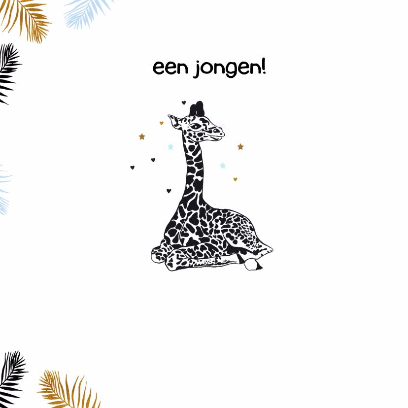 Felicitatie geboorte giraffe jongen 2