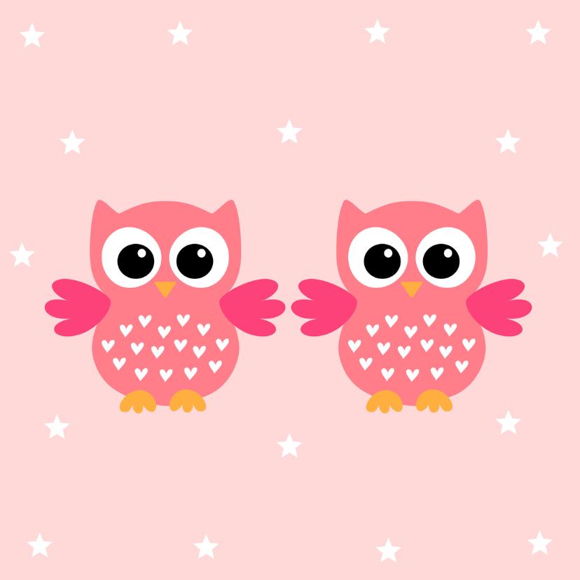 Felicitatie geboorte tweeling meisjes uiltjes 2