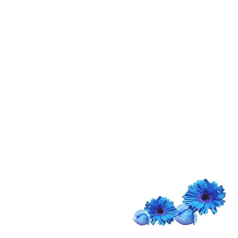 Felicitatie geboortehuisje vogel blauw 3