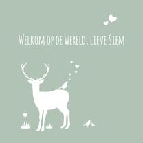 Felicitatiekaarten - Felicitatie - Hert, jongen,groen