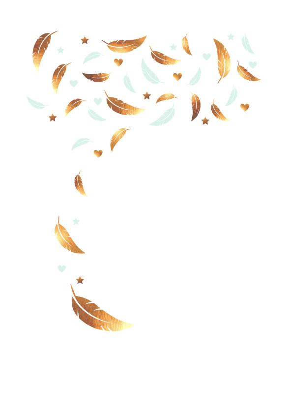 Felicitatie - jongen,veren,goud  2