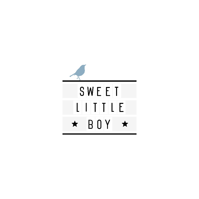 Felicitatie-Lightbox, boy, vogel 2
