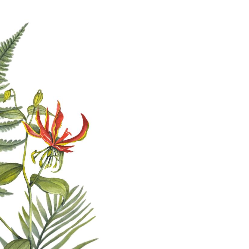 Felicitatie tropische bloemen 2