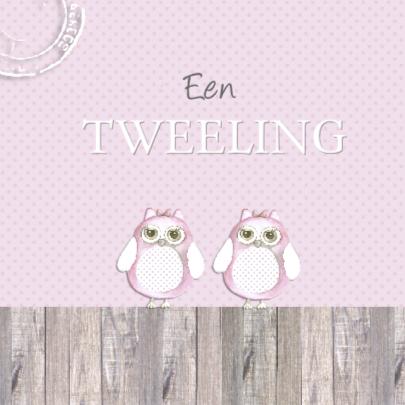 felicitatie tweeling uiltje  2