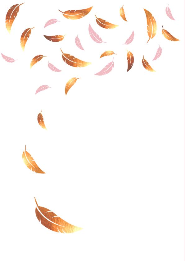 Felicitatie - Veren goud en roze 2