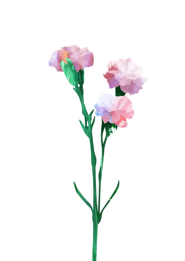 Felicitatiekaart een bosje roze anjers 2