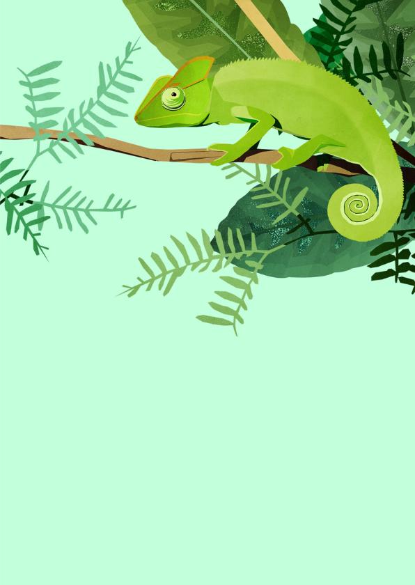 Felicitatiekaart Kameleon 3