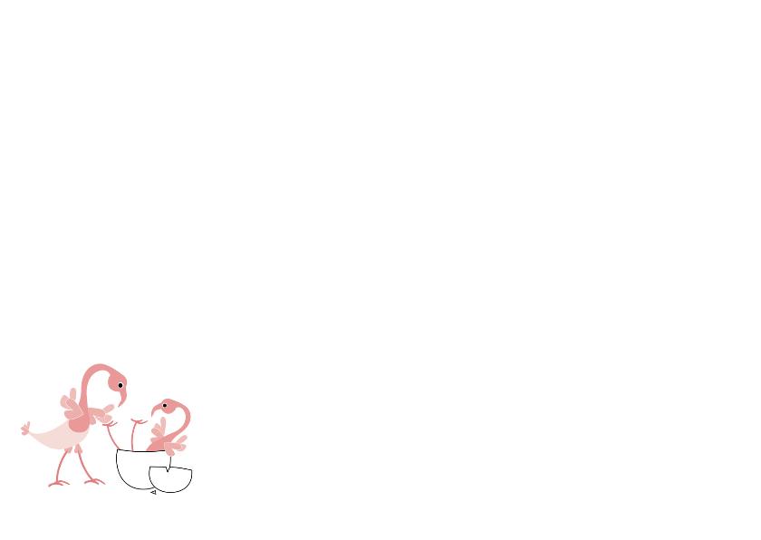 Flamingo-geboorte broertje of zusje 2