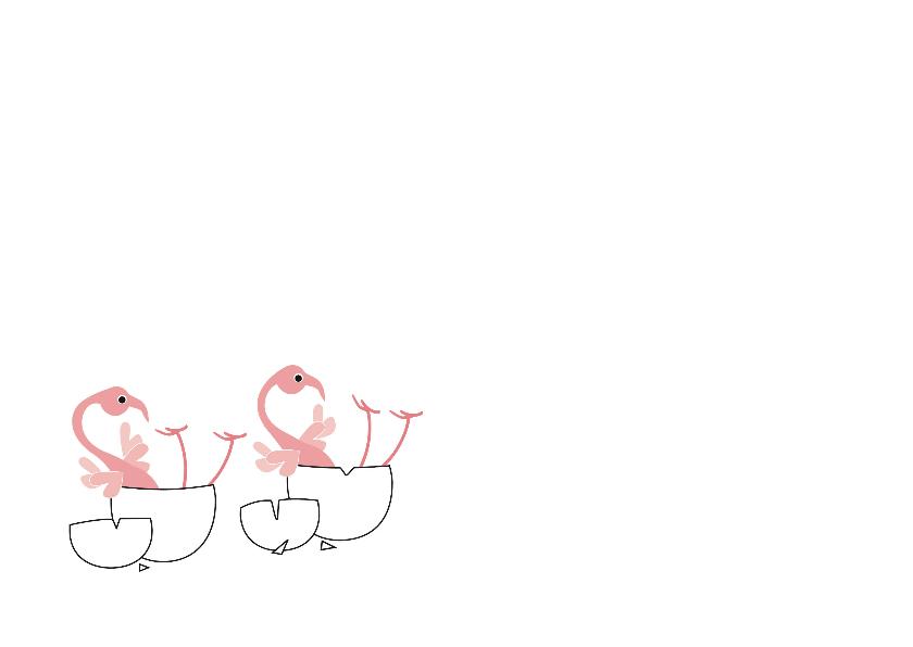 Flamingo - geboorte tweeling 2