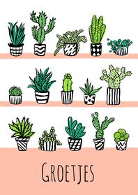 Zomaar kaarten - Fleurig kaartje cactus plantjes
